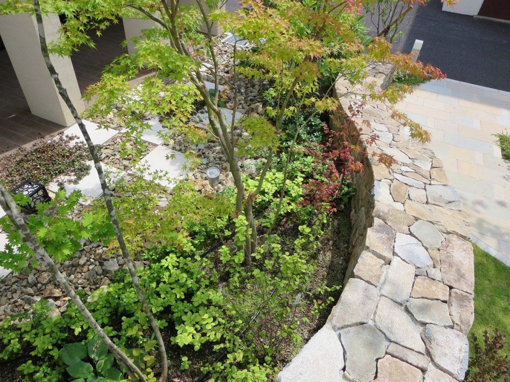 石張りの花壇の中にある植物たち